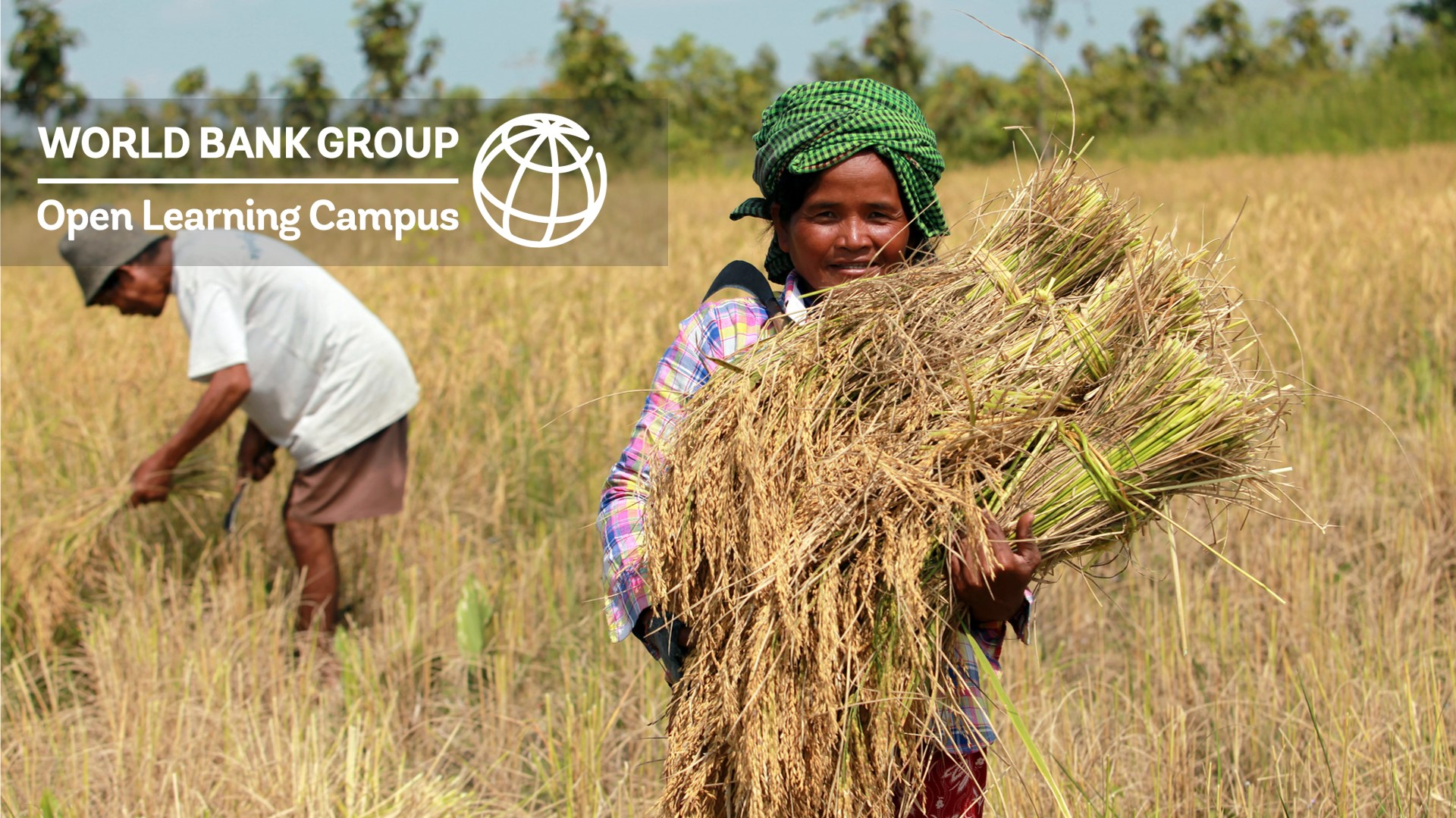 Featured image for Gender in Climate-Smart Agriculture Projects